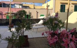 Terrazza | B&B Giovinazzo | the flower of hospitality